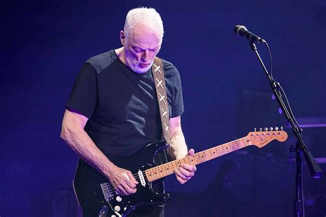 David Gilmour Is Auctioning Off His Guitar Collection