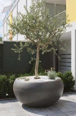 Aladin Extra Large Commericial Planter: Outdoor Pots for